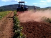 land-preparation-5