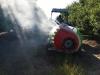 spraying-1