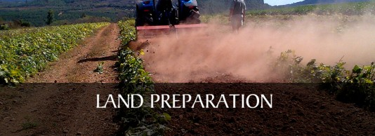 1). LAND PREPARATION