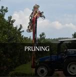 3). PRUNING & TRIMMING MACHINES