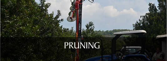3). PRUNING & TRIMMING MACHINES